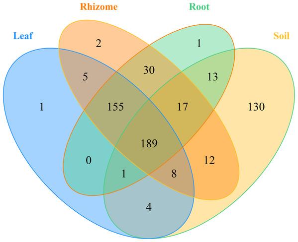 Venn diagrams of the number of OTUs in different mycobiota.