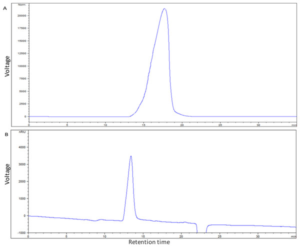 Molecular mass of EPS produced by S. thermophilus 05epsF (A) and S. thermophilus 05CK (B).