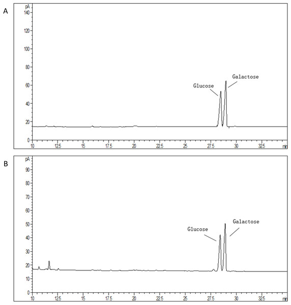 Monosaccharide composition profile of hydrolyzed EPS from S. thermophilus 05epsF (A) and S. thermophilus 05CK (B).