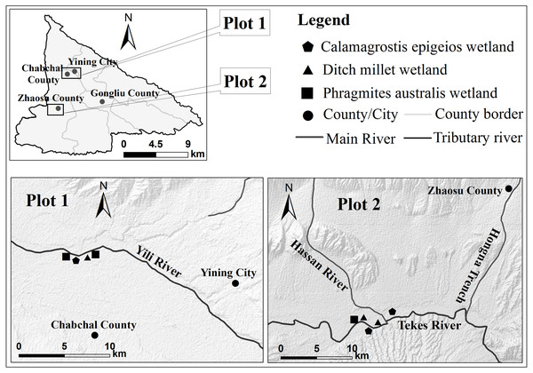 Diagram of wetland sampling point in Ili Valley.
