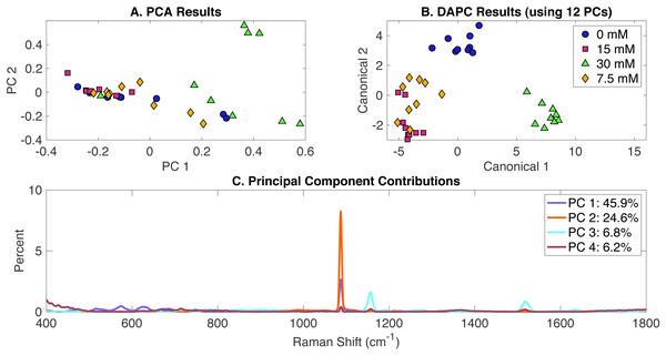 Rametrix™ LITE analysis of acetate-induced phenotypes.