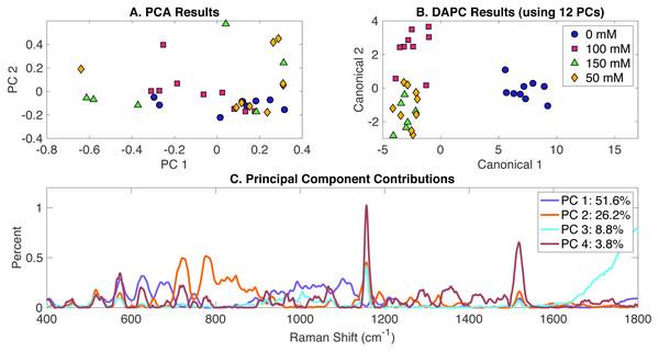 Rametrix™ LITE analysis of NaCl-induced phenotypes.
