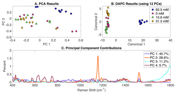Rametrix™ LITE analysis of MgSO4-induced phenotypes.