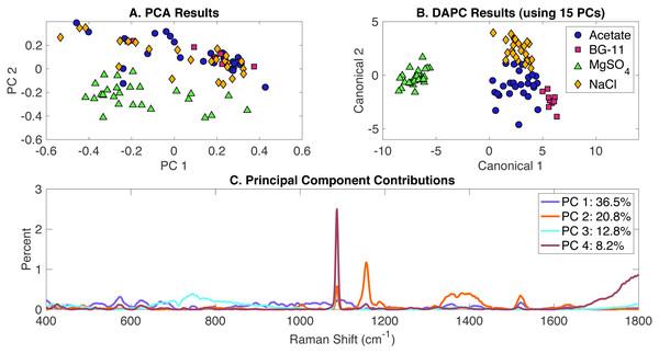 Rametrix™ LITE analysis of all phenotypes.