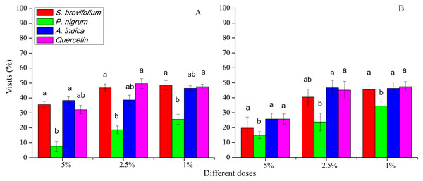 Visit (%) of female adults of B. dorsalis (A) and B. correcta (B) on treated mango fruits with the concentrations of 5%, 2.5% and 1% of four botanicals after 48 h.