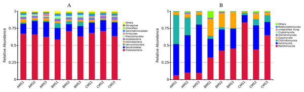Relative abundances of the top ten phyla in bacteria (A) and the top eight phyla in fungi (B) at each growth stage.