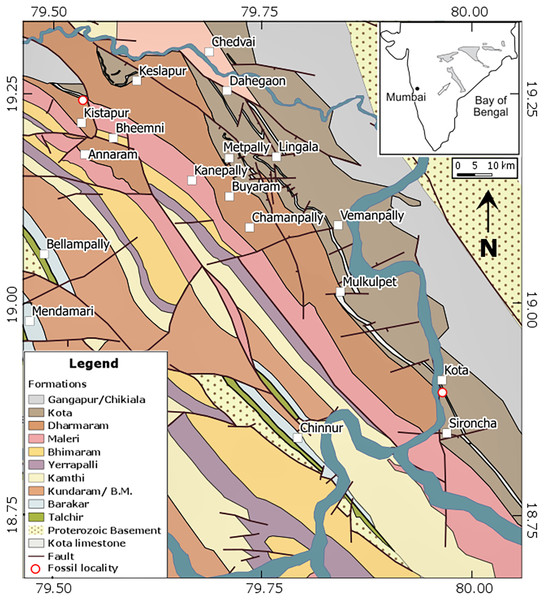 Detailed geological map of the Pranhita–Godavari basin in central India (modified after Kutty, Jain & Roy Chowdhury, 1987).