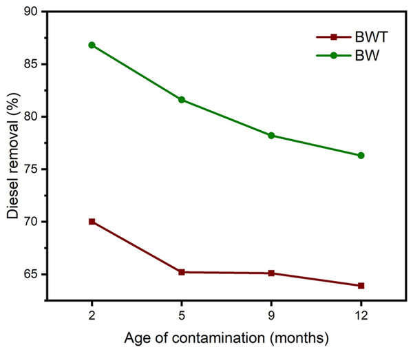 The effect of age of contamination on diesel removal efficiency; BWT and BW are Brij 35 with and without aeration respectively.