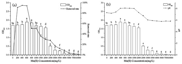 The relationship between B. thuringiensis HM7 growth, removal rate of Mn(II) and system pH at different Mn(II) concentrations.