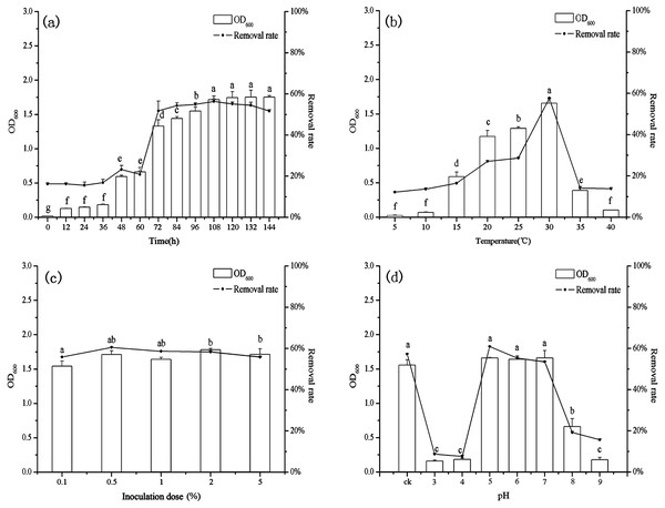 The relationship between growth and removal rate of Mn(II) under different culture conditions.