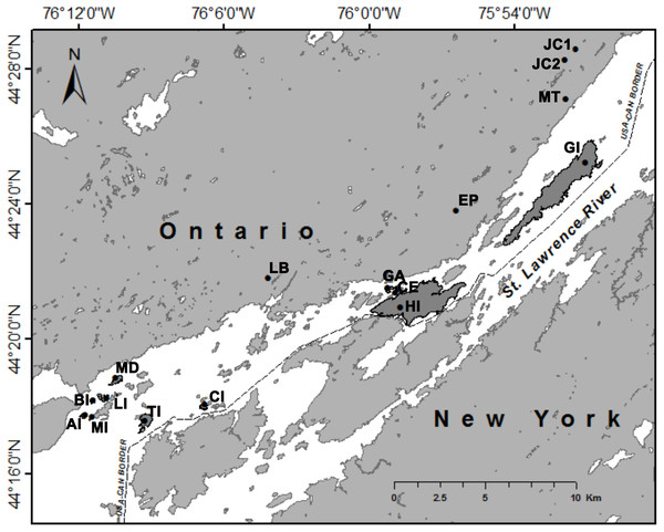 Trapping locations of white-footed mice (Peromyscus leucopus) in Thousand Islands National Park, Ontario, Canada (USGS, 2016).