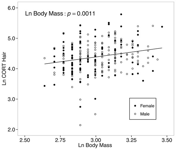Hair corticosterone (CORThair; measured in ng/g and ln-transformed) levels increased with body mass in white food mice captured over two years in the Thousand Islands National Park, Canada.