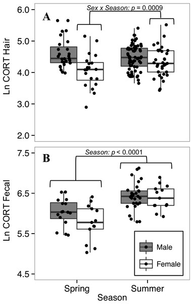 Seasonal variation in (A) hair corticosterone (CORThair), and (B) fecal corticosterone metabolites (CORTfecal) from white-footed mice captured in spring and summer, 2016.