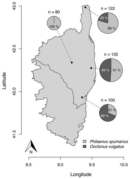Parasitism rate of Philaenus spumarius eggs in the four sites sampled in Corsica.