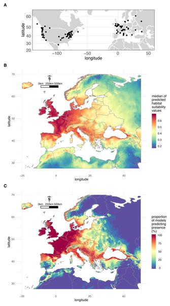 Geographical distribution of O. vulgatus.