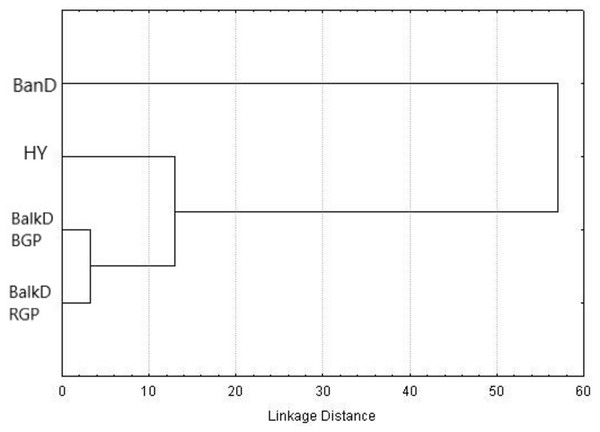 UPGMA dendrogram based on squared Mahalanobis distances between groups calculated using morphometric data.