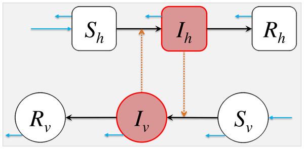 The schematic diagram of model (2).