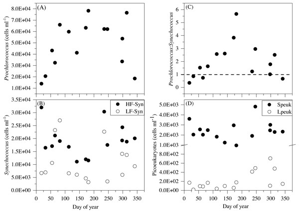 Temporal variability of autotrophic picoplankton abundances averaged for the upper 100 m.