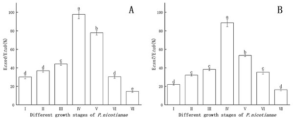 Gene expression of csn4 and csn7 at different stage of P. nicotianae based on Ecsn4/Etub and Ecsn7/Etub.