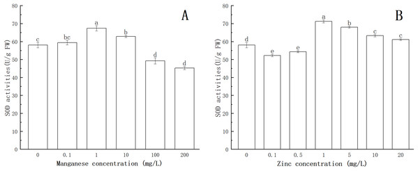 Effect of Mn and Zn induced oxidative stress on SOD activity of P. nicotianae at the stage of sporangiogenesis.