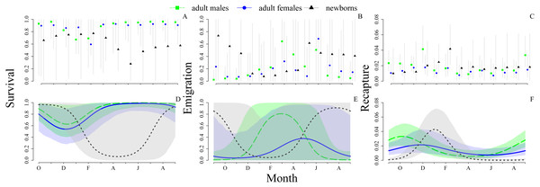 Monthly probabilities of survival, emigration and recapture for adult males, adult females and newborns Ameivula ocellifera, between September 2010 and September 2011.