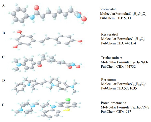 The 3D structures of five small-molecule compounds identified as potential drugs for MB treatment.