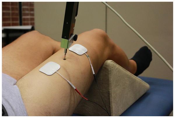 Tensiomyographical measurement of rectus femoris.