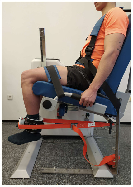 Maximal voluntary isometric contraction test for quadriceps femoris.