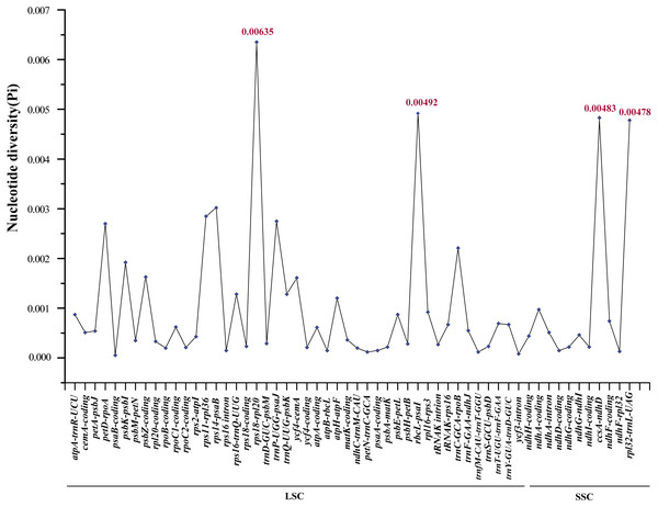 Comparative analysis of the nucleotide variability (Pi) values among 17 Aegililops tauschii accessions.