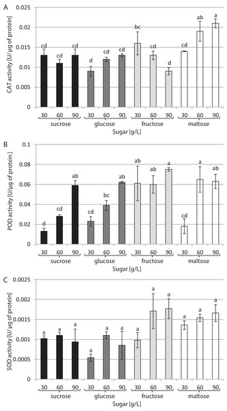 Effects of sugar type and their concentration on antioxidant enzyme activities.