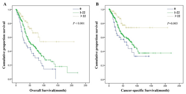 Overall survival (A) and cancer-specific survival (B) of patients in SDP-NSCLC group with different ELN plus.
