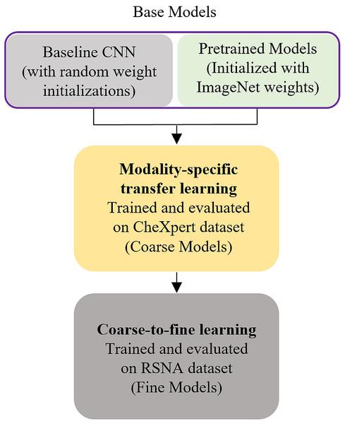 Modality-specific knowledge transfer workflow.