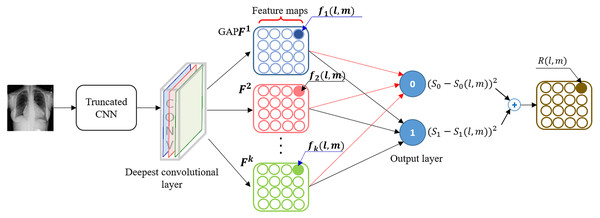 A schematic representation showing the calculation of class-selective relevance mapping (CRM) from a CNN-based DL model.