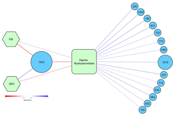 Graphical network representing the interactions in digesta samples between OTUs, diet, and digesta myeloperoxidase.