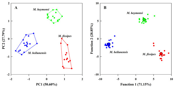 The principal component analysis and the discriminant function analysis of advertisement call parameters for the three Microhyla species.