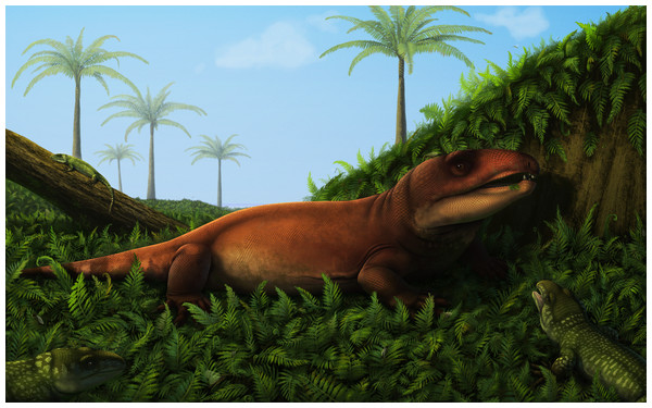 Reconstruction of the terrestrial palaeoenvironment in Piauí during the Cisuralian.