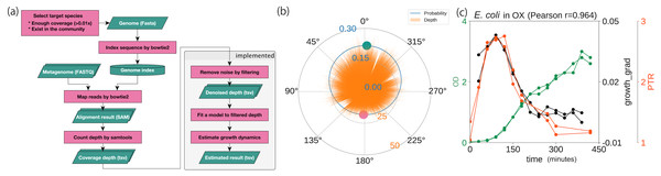 Probabilistic model for generating coverage depth.