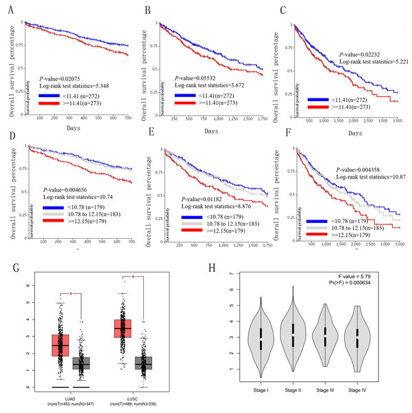 Overall survival and disease-free survival analyses of different HELLS expression lung cancer patients.