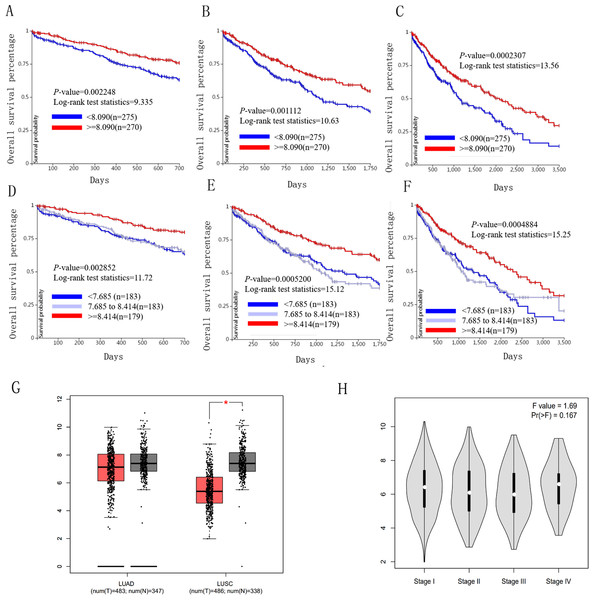 Overall survival and disease-free survival analyses of different ICAM1 expression lung cancer patients.