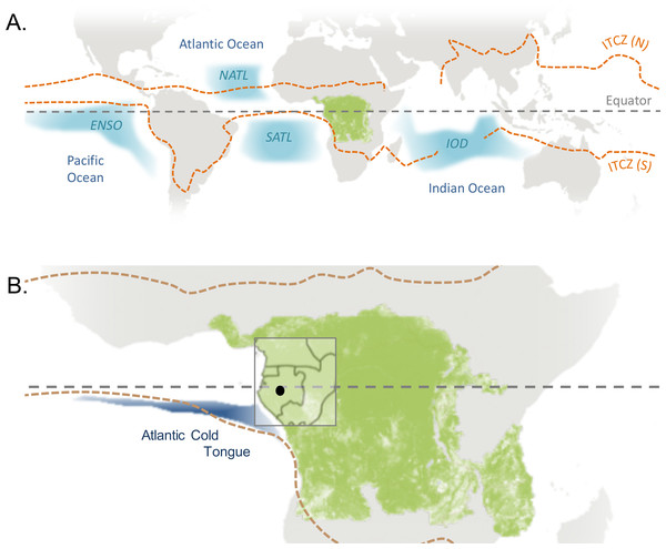 Global climatic influences on western equatorial Africa.
