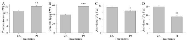 Physiological traits under CK and Pb stress conditions.