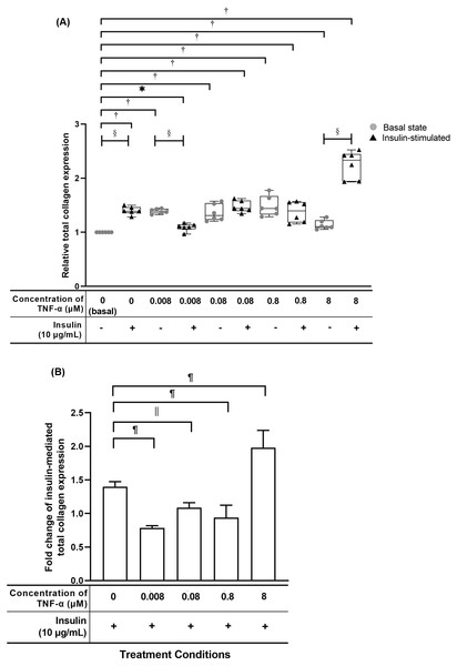 TNF-α significantly up-regulated the relative total collagen expression in hTeno treated with different concentrations of TNF-α (0.008, 0.08, 0.8 and 8 µM), with and without 10 µg/mL insulin supplement.