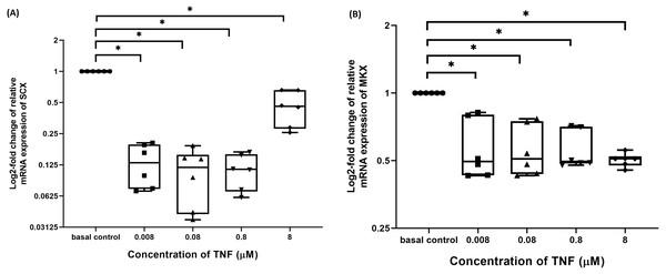 TNF-α significantly downregulated the log2-fold change of relative quantification of SCX and MKX mRNA expression levels relative to basal group.