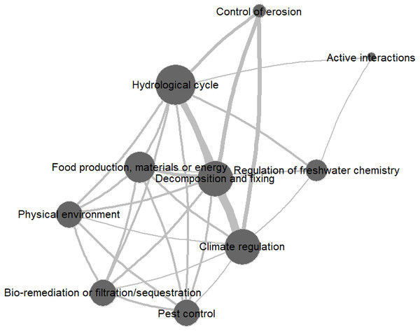 Network graph of ecosystem service co-occurrences across reviewed valuation studies (source: own elaboration).