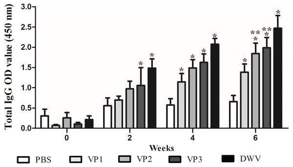 Specific IgG antibodies in serum of the immunized mice.