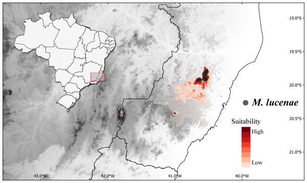 Geographic distribution and predicted suitable areas under current climatic conditions of Miconia lucenae.