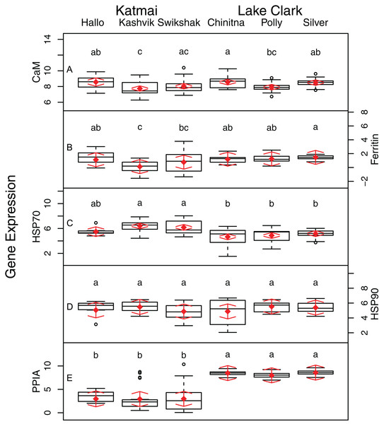 Boxplots of gene transcription data (A–E) obtained from razor clams collected at six sites in Lake Clark and Katmai National Parks and Preserves, Alaska, USA.