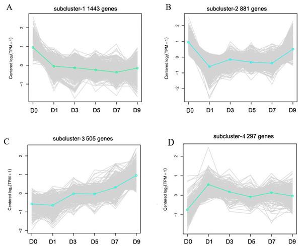 Representative time-course profile clusters.