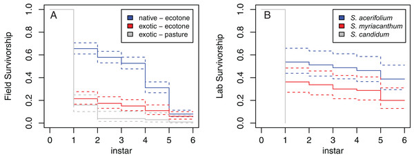 Survivorship curves for M. menapis larvae on the various host plants tested.