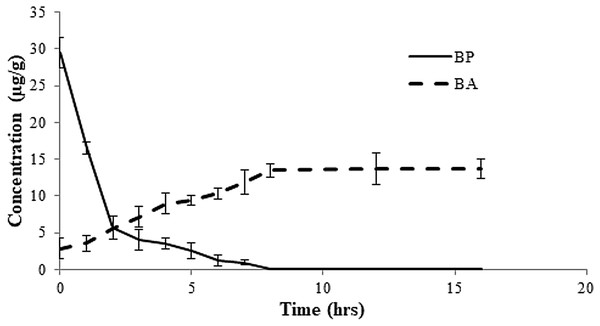 Rate of conversion of benzoyl peroxide (BP) to benzoic acid (BA) in flour at varied time intervals.